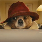 Cinema - Paddington, 2014. Trailer legendado. Animação e comédia. Sinopse: