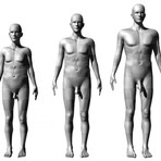GLS - Mitos e verdades: Tamanho do corpo e o tamanho do pênis