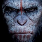 Cinema - Dawn of the Planet of the Apes