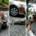 Animais - Cão desmaia de emoção ao reencontrar sua dona após 2 anos