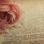 Poesias - ..... ....