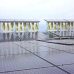 Maior projeto de energia renovável híbrido é inaugurado na Jamaica