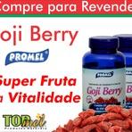 Os surpreendentes benefícios do Goji Berry para a saúde