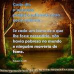 Poesias -  Postar no facebook - Cada dia a natureza produz o suficiente para nossa carência.