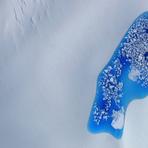 """Brilhantes derretimentos de """"Lagoas"""" no Ártico capturadas da NASA"""