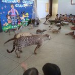Palestra de animais em extinção