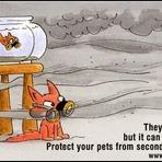 Animais e os fumantes