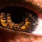 Vou invadir a íris dos seus olhos
