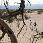 Meio ambiente - Curiosidades sobre o clima ao redor do mundo