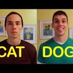 Vídeo: as diferenças entre gatos e cachorros.