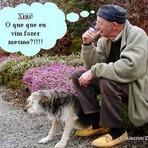Humor - Síndrome da desordem aos 50!