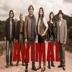 """Entretenimento - Com uma história que foge do comum, """"Animal"""" desperta interesse e mostra ousadia do GNT"""