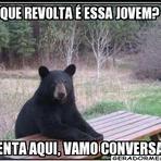 Urso Rebelde