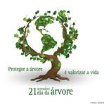 Dia 21 de setembro: dia da árvore