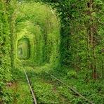 Curiosidades - Tunnel of Love, Ucrânia
