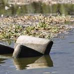 ALERTA: Em menos de oito meses, Humanidade já usou todos os recursos naturais disponíveis para o ano