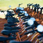 Esportes - BH deve ter 40 pontos de compartilhamento de bikes até setembro