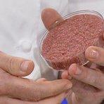 Ciência - Nova alimentação: A dieta do futuro seria carne in vitro, carne de dinossauro e carnes provenientes de células tronco.