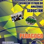 Concurso SEDUC AM 2014 PEDAGOGO