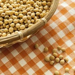 Soja: Leguminosa com mais proteínas e menos carboidratos