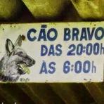 Placas insanas encontradas no Brasil