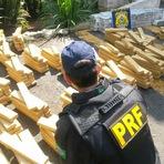 Segurança - PRF realiza a maior apreensão de droga de São Paulo na Regis Bittencourt (BR116)