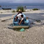 Crime Ambiental? Mais de 53 toneladas de peixes mortos foram retirados de um lago no México