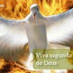 Viva segundo ao Espirito de Deus