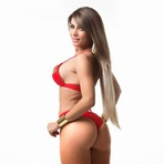 As Gatas Do Miss Bumbum Brasil 2014.