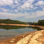 Meio ambiente - Água e floresta merecem gestão de longo prazo, por Suzana Padua