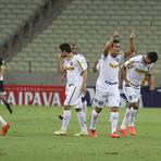 Botafogo avança na Copa do Brasil após jogo histórico