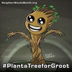 Esqueça o Desafio do Balde, Plante uma Árvore para o Groot!