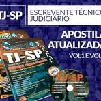 Concursos Públicos em Destaque TJ SP, MP RS, TCE GO, PC RJ, RECEITA, MTE, IBGE, PRF, INSS, SES MG - 2014