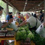 Meio ambiente - Campinas realiza XI Semana de Agricultura Orgânica de Campinas