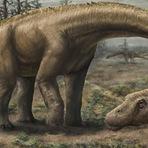 Animais - Descoberto dinossauro gigantesco que surpreende os cientistas