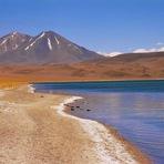 Curiosidades - San Pedro de Atacama – Chile