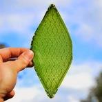 Artista cria folha artificial capaz de realizar fotossíntese e abre porta para colonização espacial.