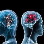 Ciência - Cientistas conseguem fazer cérebro comunicar com outro cérebro