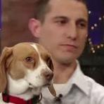 Animais - A forma como essa cadela se faz de morta vai fazer você rir!