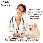 Animais - Dia do veterinário 9 de setembro