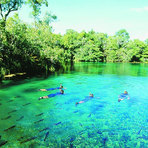 Turismo - Turismo em Bonito Mato Grosso do Sul