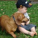 Animais - A raça Dachshund com crianças (Teckel, Cofap, Basset, salsicha, lingüiça)