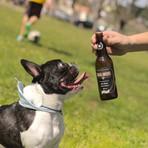 Cerveja pra cachorro?