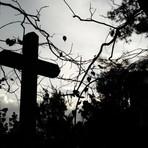 Mistérios - Cinetério: Assista filmes de terror no Cemitério da Consolação neste sábado