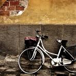 Ilustração sobre A bicicleta