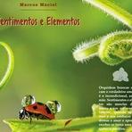 Livro de poesia trás homenagem à Alanis Morissette