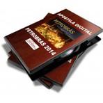 APOSTILA PETROBRAS 2014 ADMINISTRADOR, CONTADOR, ENFERMEIRO, ENGENHEIRO CIVIL, MECÂNICA E PETRÓLEO - 2 VOLUMES