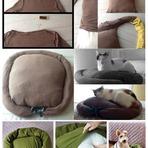 Veja nessa matéria ideias de casas sutentáveis para cães e gatos