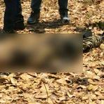 Corpo em avançado estado de decomposição é encontrado em Wanderlãndia