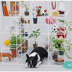 Arquitetura e decoração - Arquitetura para Pets! - Design - Blog Minascasa